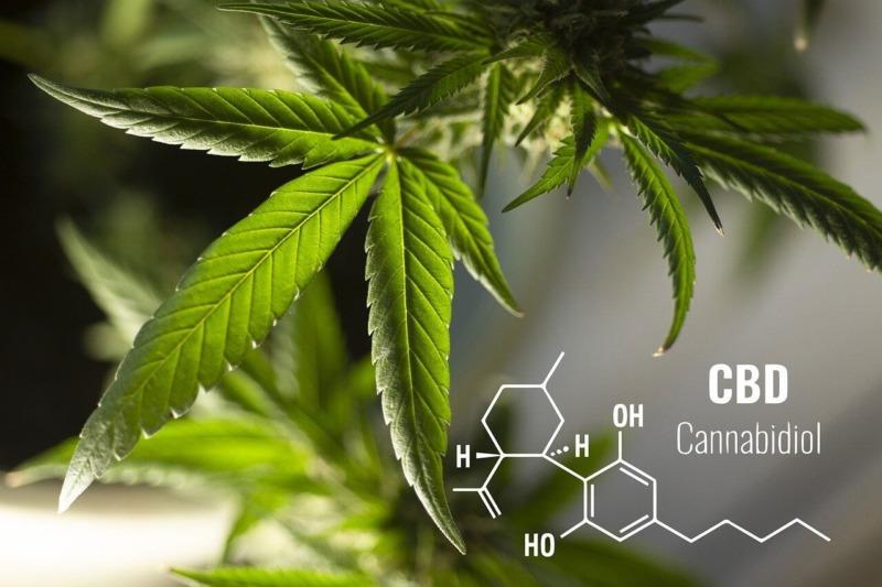 CBDとは?リラックスできる合法大麻を使ってみよう【安全です】